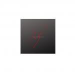 Logo photographe2