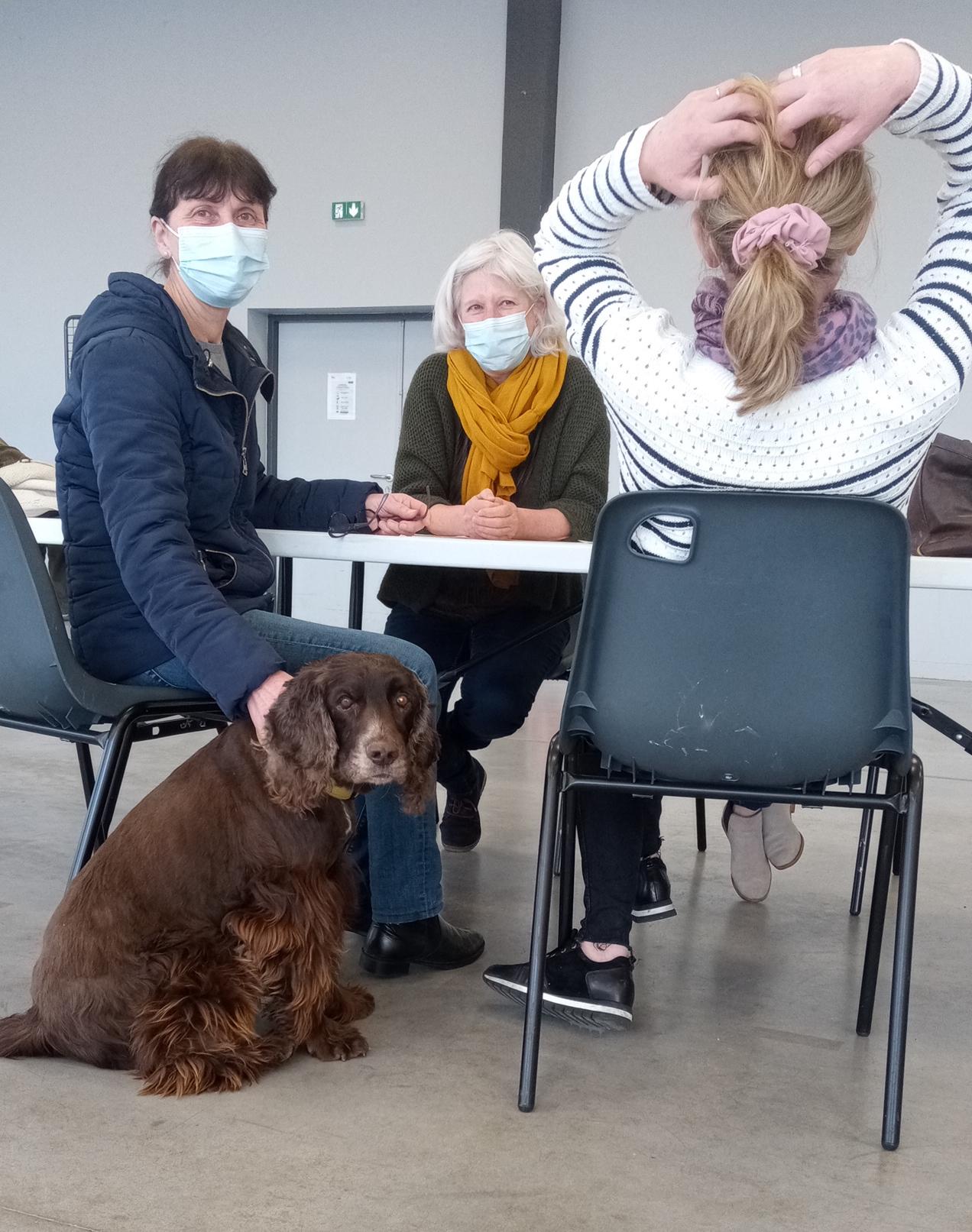 Read more about the article La médiation animale peut-elle trouver sa place en entreprise ?