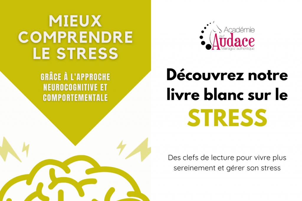 Livre Blanc STRESS